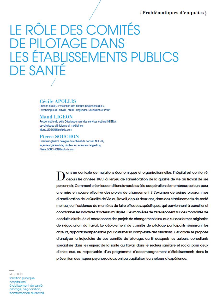 Visuel - Le rôle des comités de pilotage dans les établissements publics de santé