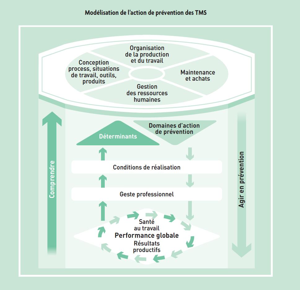 Modélisation de l'action de prévention des TMS