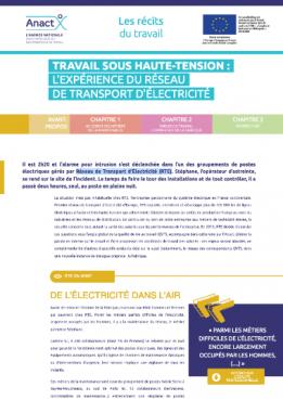 Vignette document Travail sous haute-tension : l'expérience du Réseau de Transport d'Électricité (RTE)