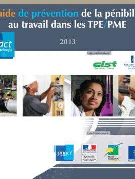 Guide pour la prévention de la pénibilité au travail dans les TPE/PME
