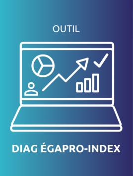 outil_diag_ega_pro-index